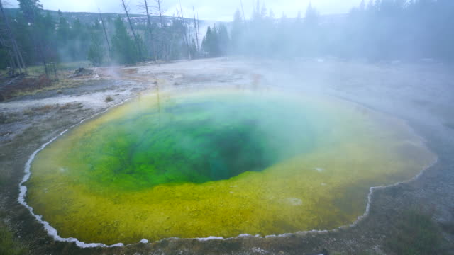 vídeos de stock, filmes e b-roll de morning glory pool, yellowstone national park, unesco world heritage, wyoming, usa, north america, america - piscina térmica