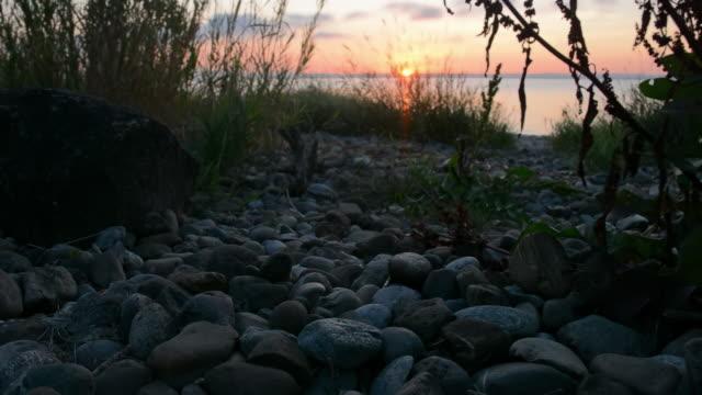 morning lakeshore - seeufer stock-videos und b-roll-filmmaterial