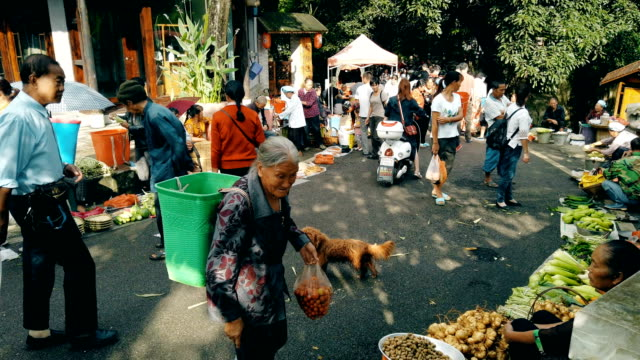 morning market in village,guizhou,china. - civilian stock videos & royalty-free footage