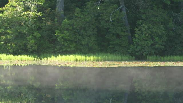 Morning mist flows over lake surface, long panning shot