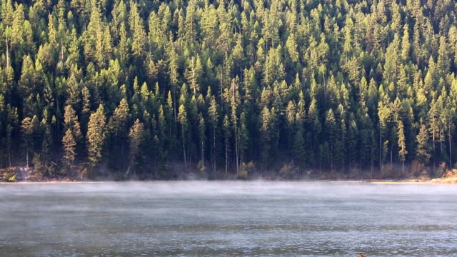 morning mist on a mountain lake - glacier national park us stock videos and b-roll footage