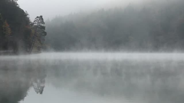 ws morning mist over lake alatsee / bavaria, germany - see stock-videos und b-roll-filmmaterial