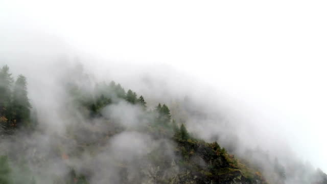 vídeos de stock e filmes b-roll de morning mist rising up high mountain cinemagraph - nevoeiro