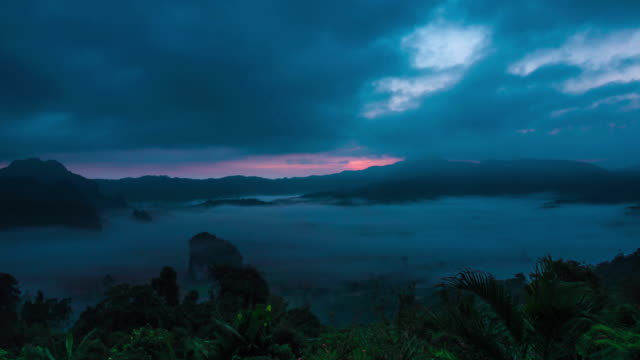 Morning Mist Twilight and sunrise at Tropical Rain forest.