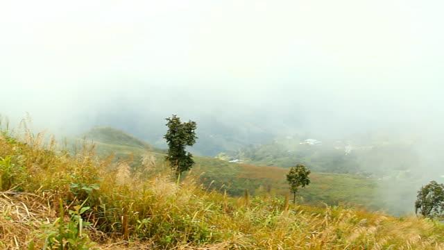 morning mist - annapurna range stock videos and b-roll footage