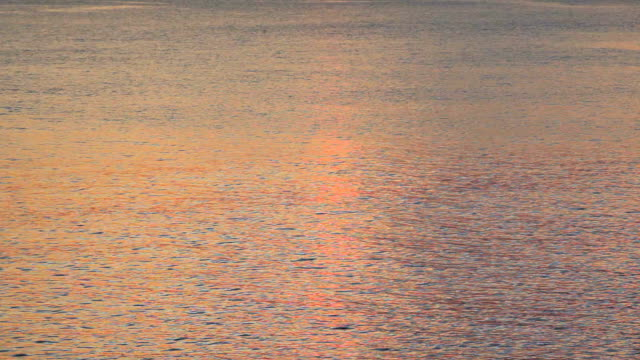 morning ocean - plusphoto stock videos & royalty-free footage