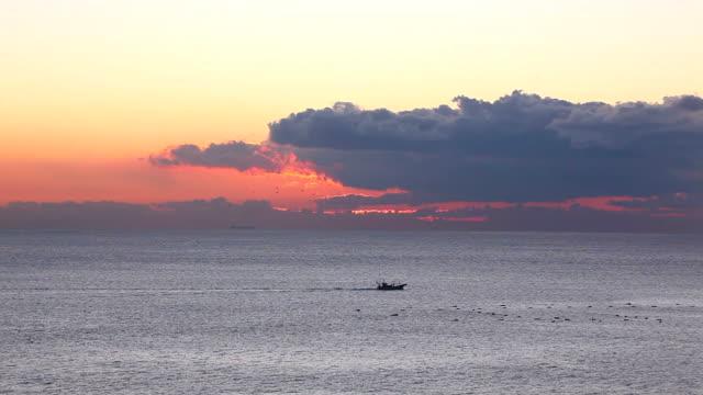 mattina sull'oceano - plusphoto video stock e b–roll