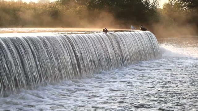 朝の川ます。