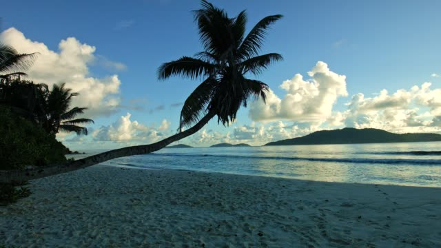 Morning scene at Anse Fourmis, La Digue Island