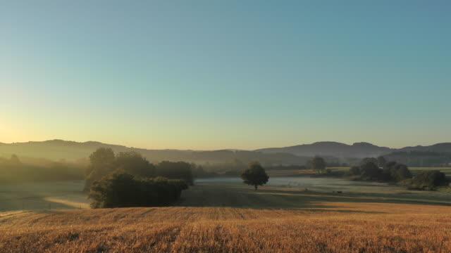 vidéos et rushes de morning scene at grassy meadow in france - scène rurale