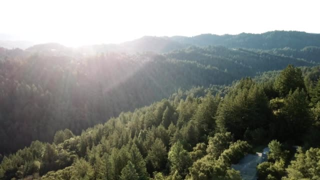 morning sun over santa cruz mountains - santa cruz california stock videos and b-roll footage