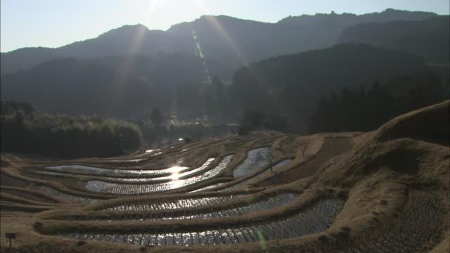 Morning sun shines on the Oyama Senmaida rice terraces in Chiba, Japan.