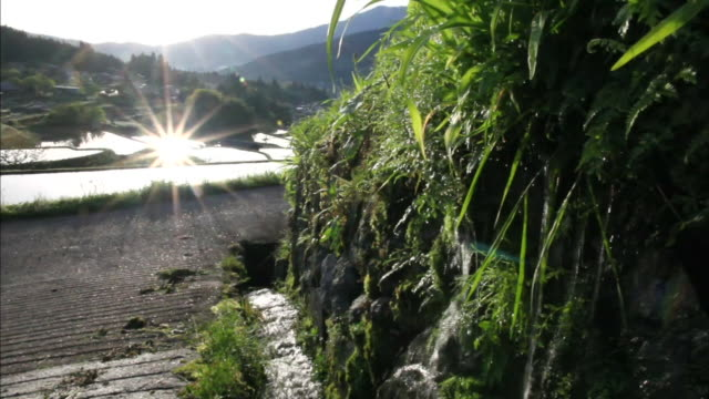 morning sun sparkles across rice paddies of the sakaori rice terraces, japan. - 水田点の映像素材/bロール