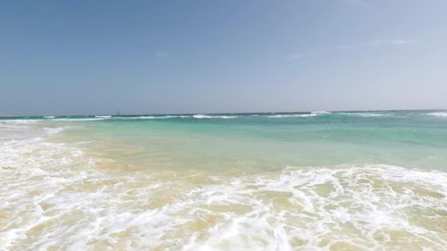 morning swim - god stock videos & royalty-free footage