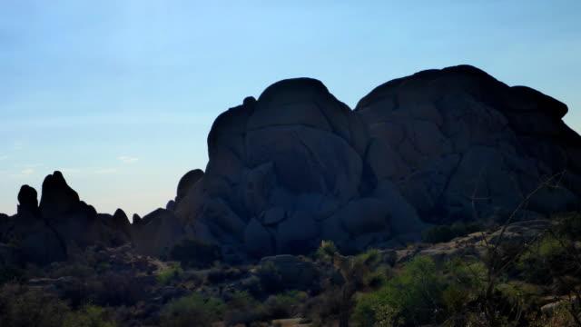 朝の時間の経過でスカルミナミジョシュアツリー国立公園 - ガラパゴスウチワサボテン点の映像素材/bロール