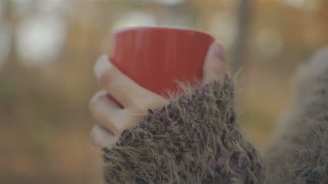 morning - shawl stock videos & royalty-free footage