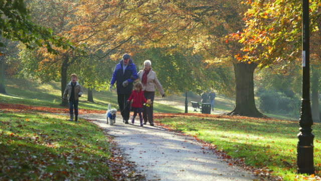 morning walk with grandparents - autumn stock videos & royalty-free footage