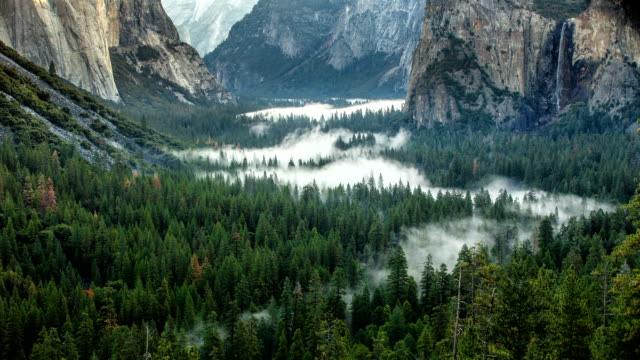 morning yosemite valley time lapse fog - national park stock videos & royalty-free footage
