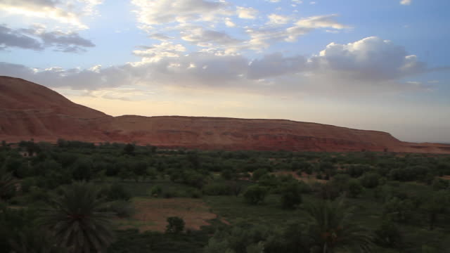 moroccan flora outside town pan l - wiese stock videos & royalty-free footage