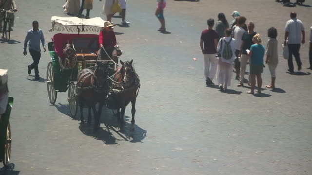moroccan horse carriage in marrakesh courtyard - wiese video stock e b–roll