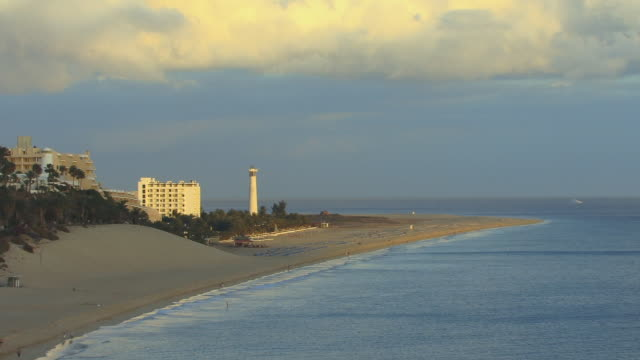 vídeos de stock e filmes b-roll de ha, ws, zo, morro jable beach / fuerteventura, canary islands, spain - fan palm tree