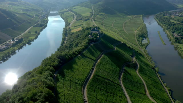 moselle river - vineyard stock videos & royalty-free footage