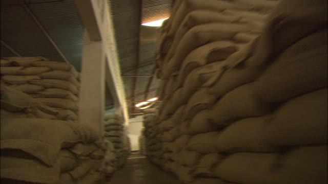 moshi; coffee plantation - sack stock videos & royalty-free footage