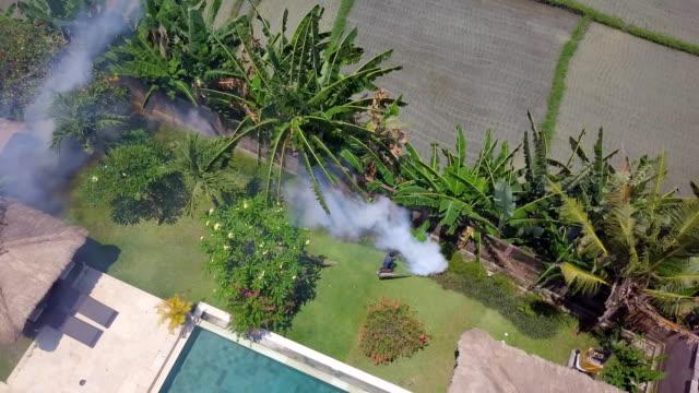Mosquito Fogging Bali Villa