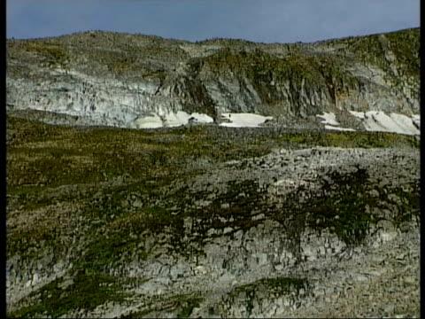 WA moss and lichen on mountain, series, Antarctica