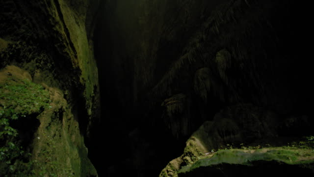 moss covered cave - new zealand stock videos & royalty-free footage