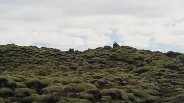 moss covered lava in Iceland real time