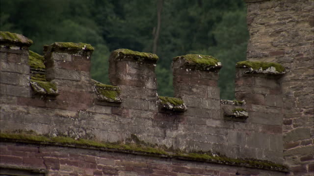 moss covers the wall of hampton court castle in herefordshire. available in hd. - herefordshire stock videos & royalty-free footage