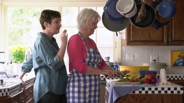 MS Mother and adult daughter talking together in the kitchen