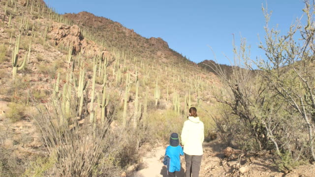 Mother and child hikes in Saguaro National Park Arizona USA