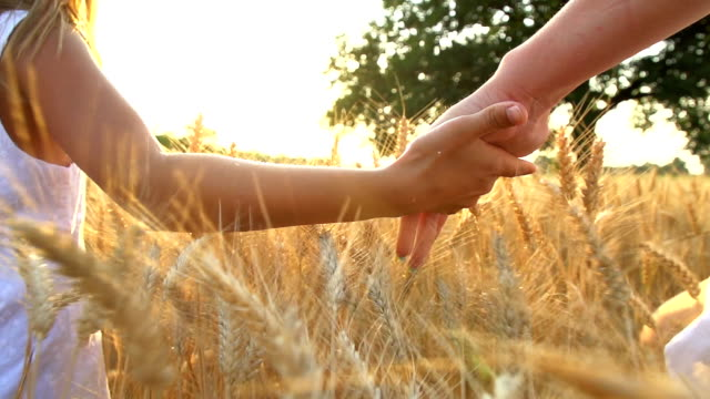hd super slow-motion: mother and child holding hands - wheat stock videos & royalty-free footage