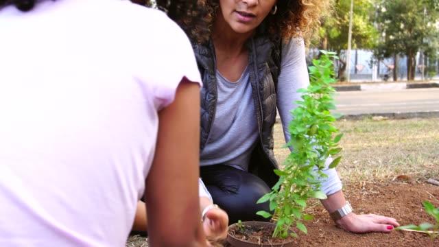 vídeos de stock, filmes e b-roll de mãe e criança plantando árvore jovem na terra preta como salvar o conceito de mundo - vegetable garden