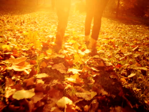 母と子 walikng の公園で秋の日 - 生い茂る点の映像素材/bロール