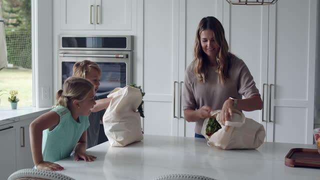 vídeos de stock e filmes b-roll de mother and children coming home with groceries - saco de compras