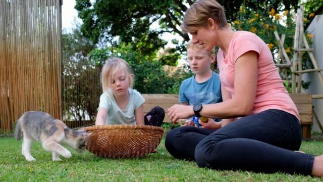 mor och barn räknar sina ätare ägg - påsk bildbanksvideor och videomaterial från bakom kulisserna