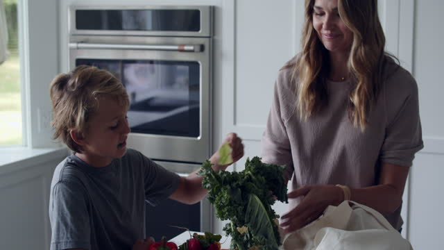 cu mother and children talking about healthy eating - family with two children stock videos & royalty-free footage