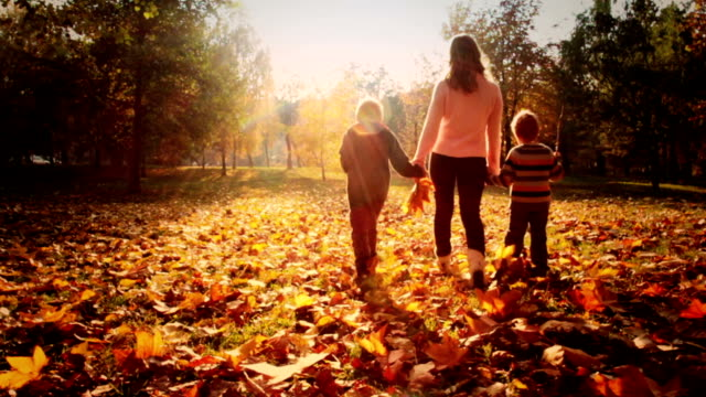 mother and children walking in the park - autumn stock videos & royalty-free footage