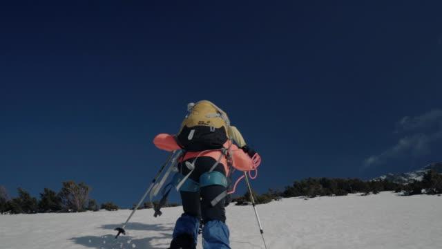 母と娘のアルピニストは、山の上の岩のトレイルを登ります - 冠雪点の映像素材/bロール