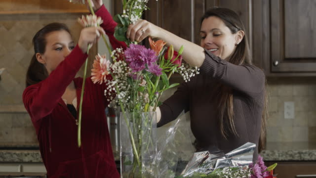 ms mother and daughter (8-9) arranging flowers in vase / orem, utah, usa - orem stock-videos und b-roll-filmmaterial