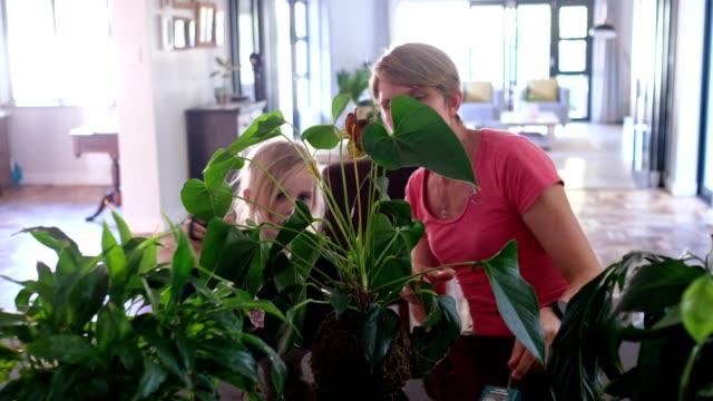 vidéos et rushes de mère et descendant s'occupant de leurs plantes d'intérieur - famille avec un enfant