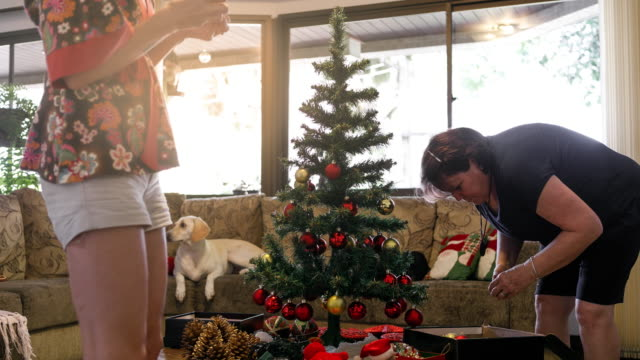 mother and daughter decorating christmas tree time lapse - decoration stock videos & royalty-free footage