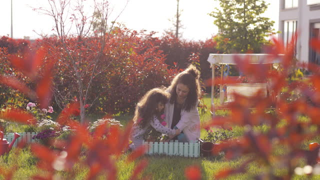 mother and daughter gardening during a sunny day, mother and daughter are planting flowers in the backyard of the house, hands planting green seedling, community gardening, urban agriculture, allotments, sustainable garden, happy family concept - domestic garden stock videos & royalty-free footage