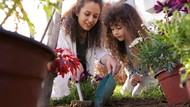 vidéos et rushes de jardinage de mère et de fille pendant une journée ensoleillée, la mère et la fille plantent des fleurs dans l'arrière-cour de la maison, les mains plantant le semis vert, le jardinage communautaire, l'agriculture urbaine, les attributions, le jard - jour