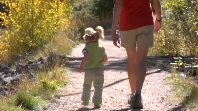 ms, mother and daughter (12-17 months) hiking in forest, rear view, autumn, santa fe, new mexico, usa - 12 17 months stock videos & royalty-free footage