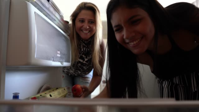 vídeos de stock, filmes e b-roll de refrigerador da abertura da matriz e da filha - geladeira