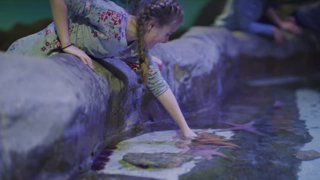 Mother and daughter petting starfish in aquarium / Draper, Utah, United States